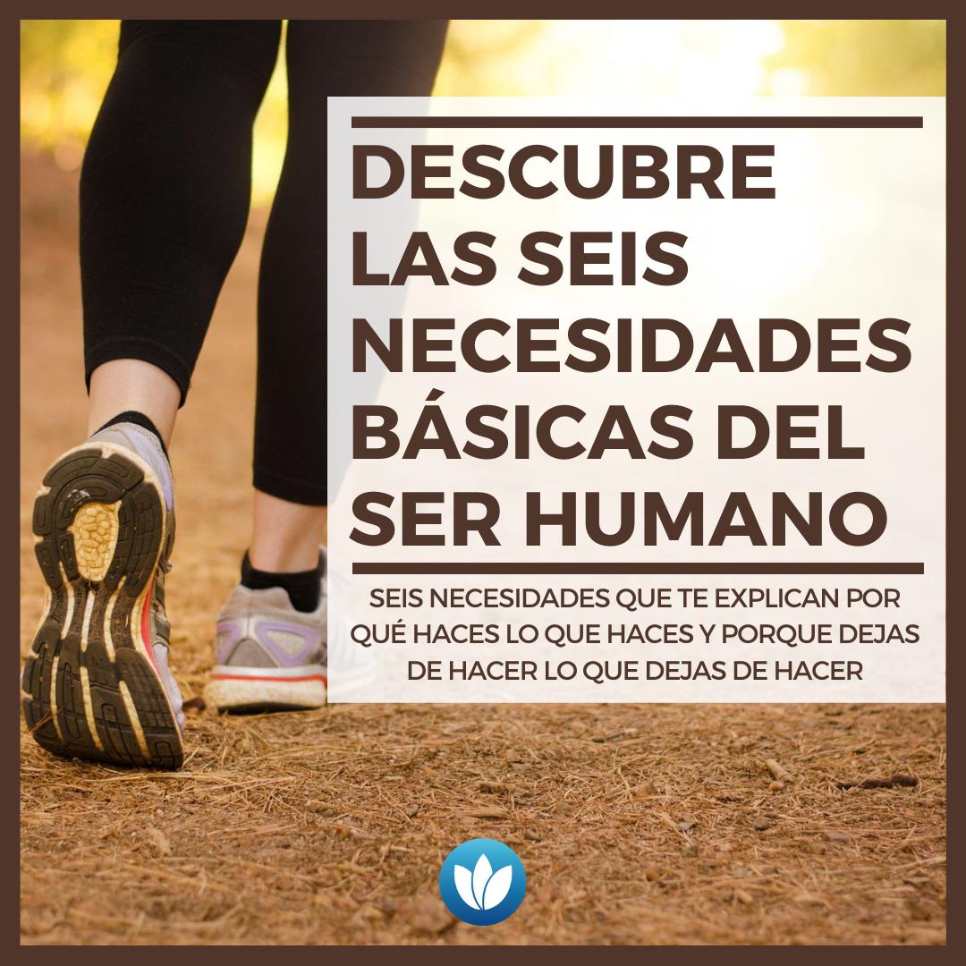 Descubre-las-seis-necesidades-básicas-del-ser-humano.png